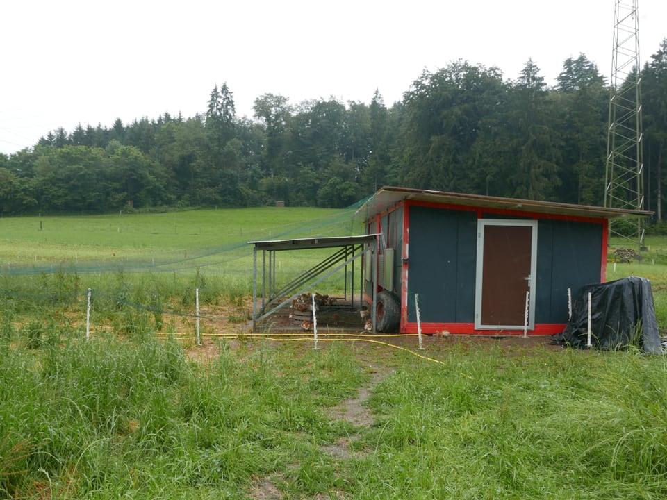 Der Stall der Freiland-Hühner auf dem Wendelinhof in Niderwil.