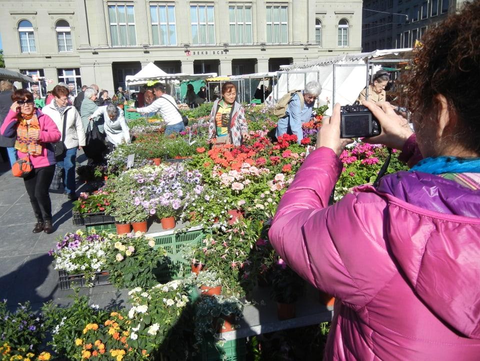 Eine Frau in pinkfarbener Jacke fotografiert am Wochenmarkt Touristen, unter anderem Asiaten. Vorne sind Topfpflanzen, im Hintergrund ist ein Teil des Gebäudes der Berner Kantonalbank zu sehen.