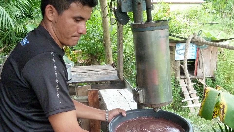 In der Pfahlhütte wird die Açaí-Frucht weiterverarbeitet.