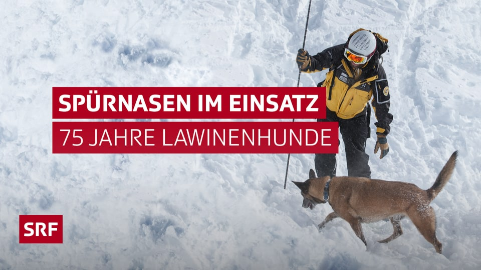 Lawinenunglück Schweiz Aktuell