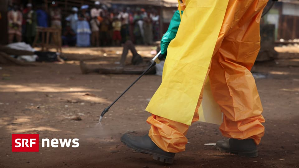 Ebola Aktueller Stand