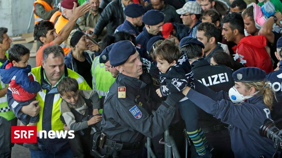 News Flüchtlinge österreich