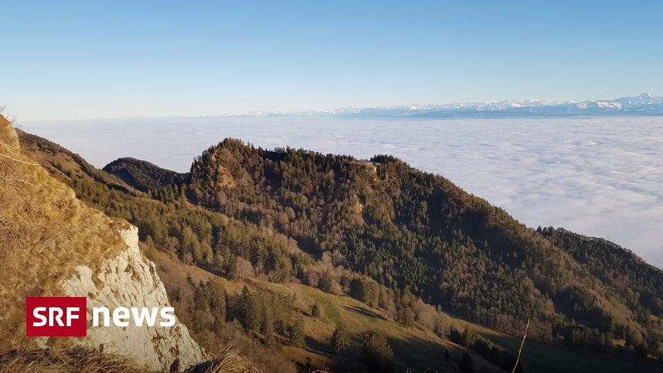 Entscheid der Unesco - Solothurner und Tessiner Buchenwälder neu Weltnaturerbe