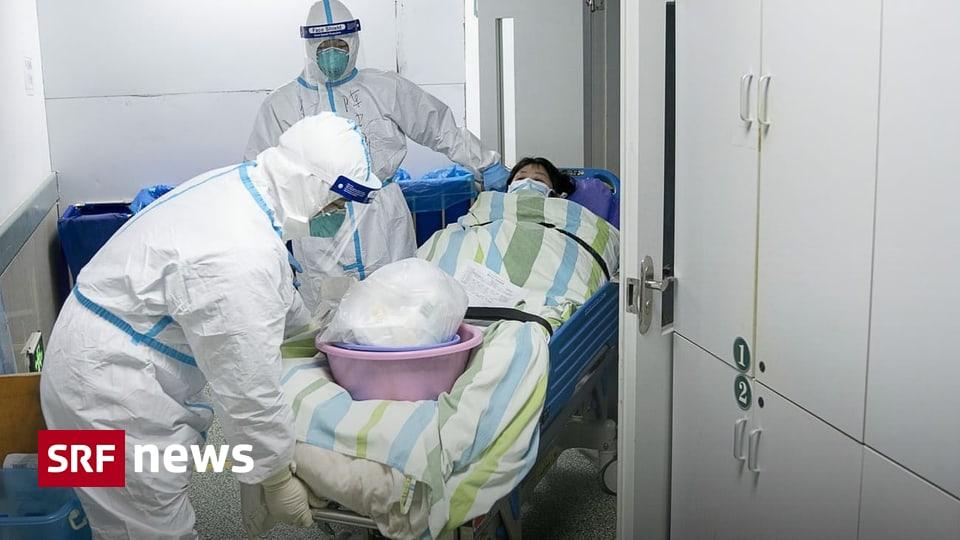«Weniger gefährlich als SARS» - Was über das Corona-Virus bislang bekannt ist
