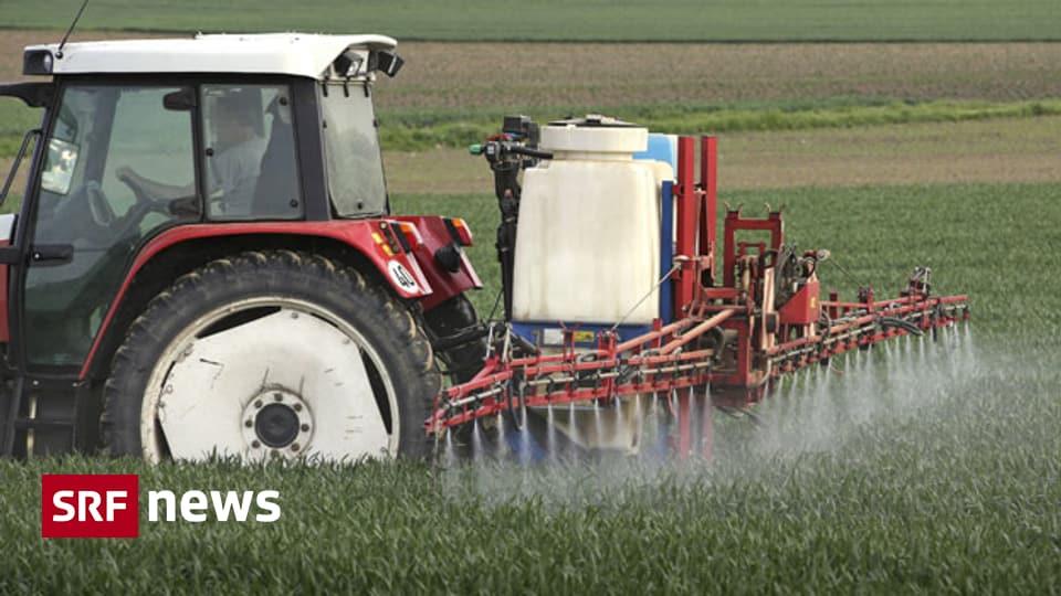 Verbot von Chlorothalonil - Bauern denken über Schadenersatzforderungen nach