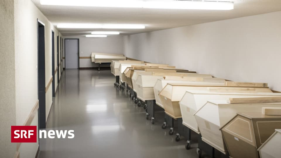 BAG-Zahlen kritisch betrachtet - Sterben die Patienten wegen oder mit Corona?