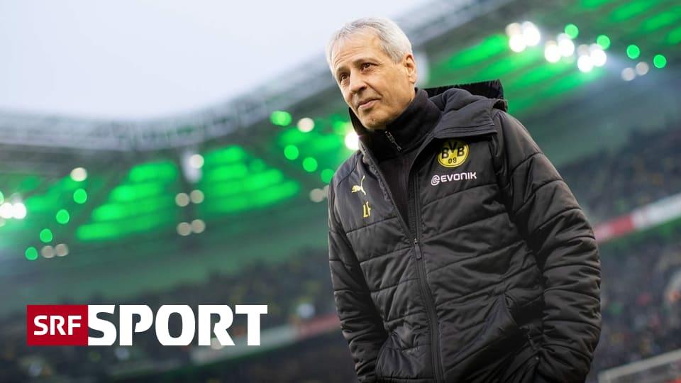 BVB-Coach im Interview - Favre: «Das kann niemanden unberührt lassen»