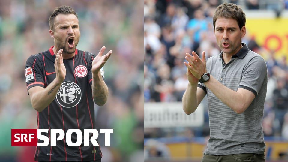 Schweizer Fussball Ligen