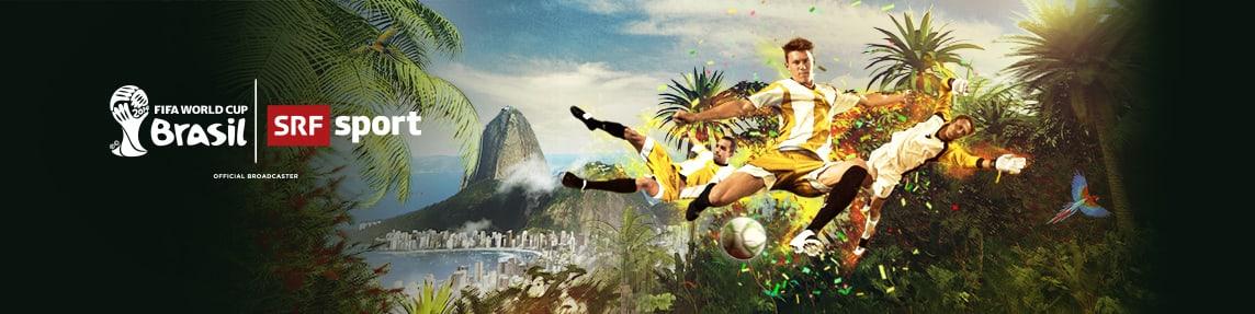 FIFA WM 2014