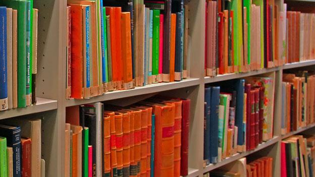 Bücher sind meine besten Freunde, sagt Tom Rachman