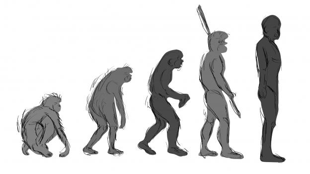 Zeichnung die zeigt, wie der Mensch sich im Laufe von Millionen von Jahren aufgerichtet hat