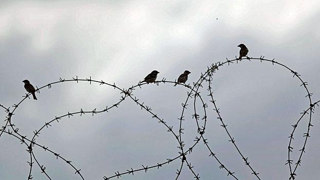 Stacheldraht an der Grenze zu Gaza.