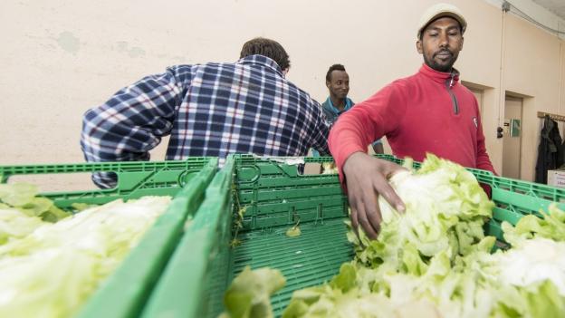 CVP will Arbeitspflicht und Bargeldverbot für Flüchtlinge