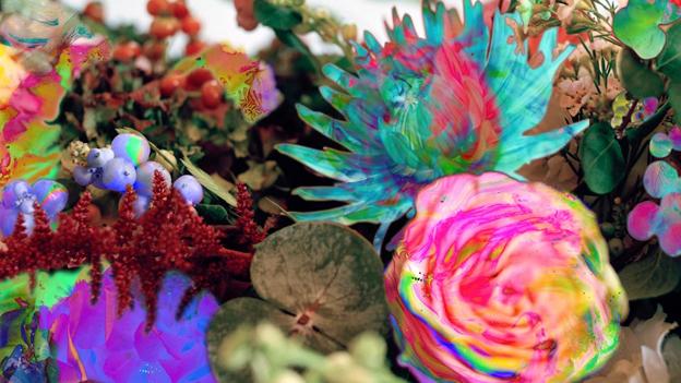 Das florale Cover des neuen Darkstar-Album