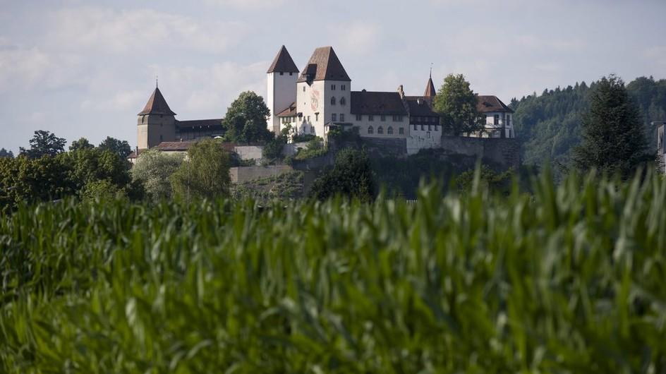 Vier Nutzungen sind für das alte Zähringerschloss künftig vorgesehen.