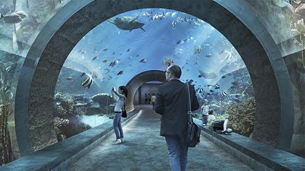 Spektakuläre Unterwasserwelt an der Heuwaage im geplanten Ozeanium.