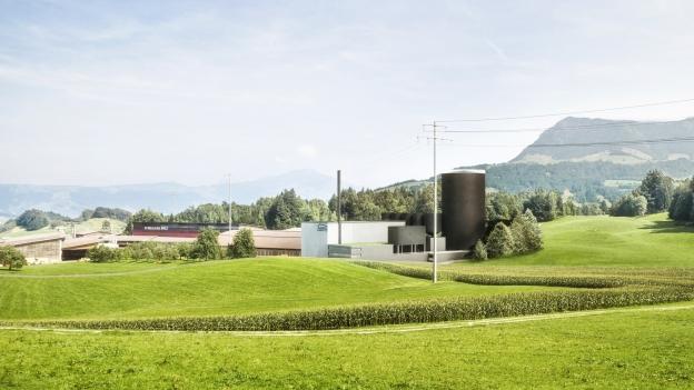 Holzheizkraftwerk in Haltikon: Visualisierung
