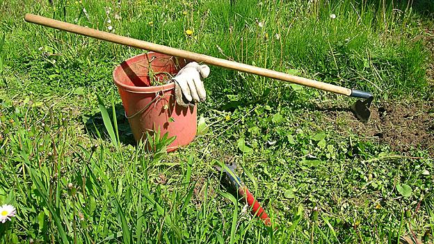 Jät-Eimer und Hacke im Garten.