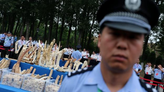 Im Vordergrund unschaft ein Polizist, hinter ihm beschlagnahmte Elfenbeinschnitzereien.
