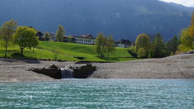 Das Ufer eines Sees.