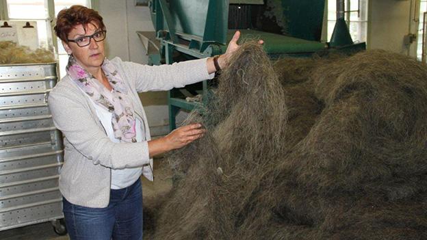Eine Frau steht vor einem grossen Haufen Rosshaare.