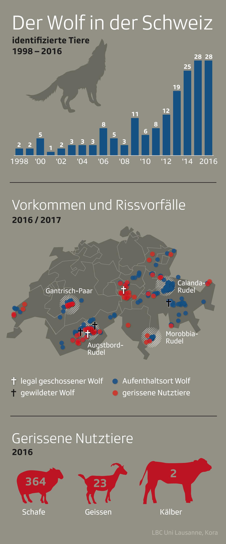 Der Wolf in der Schweiz 2016