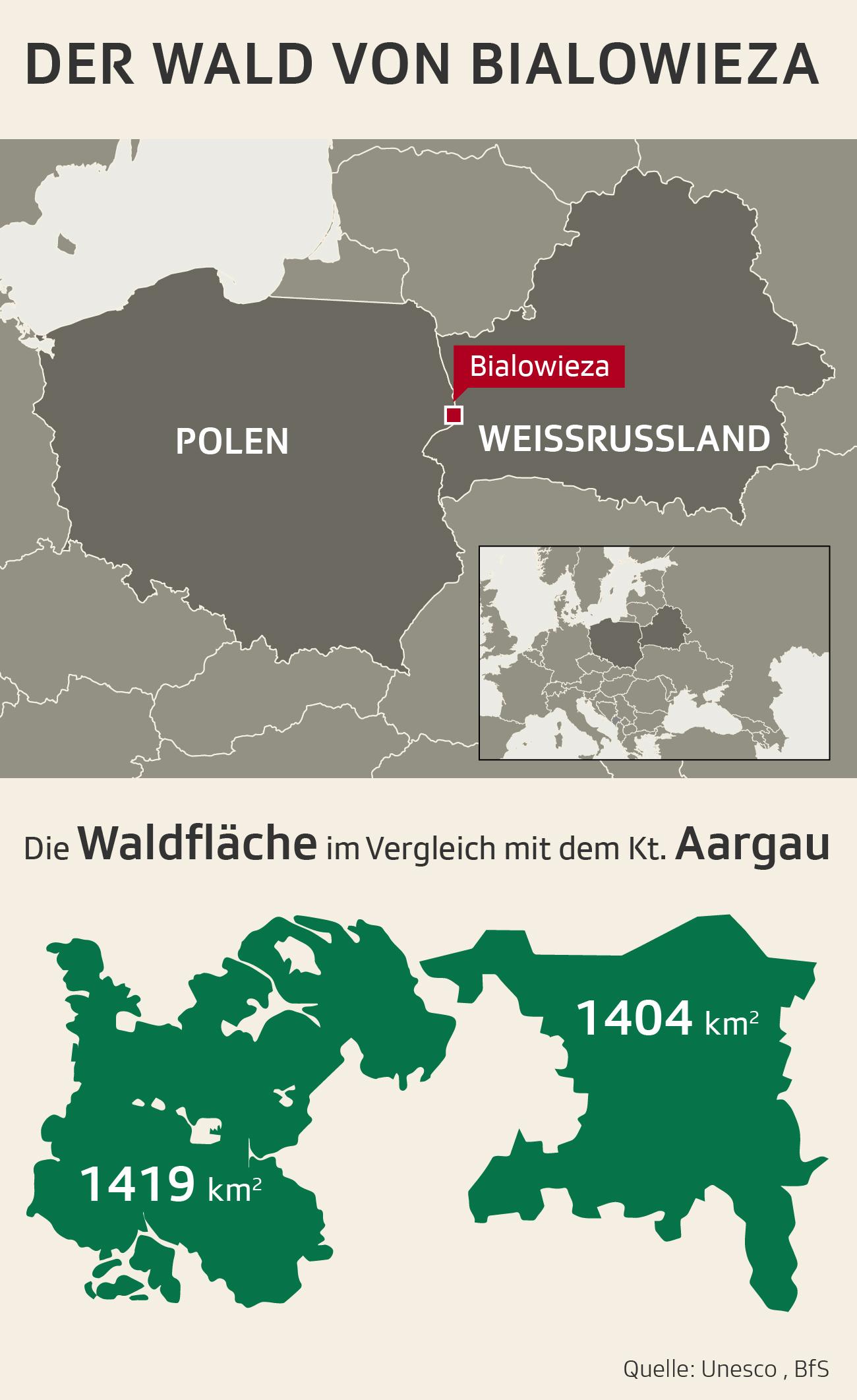 Fläche von Urwald Bialowieza