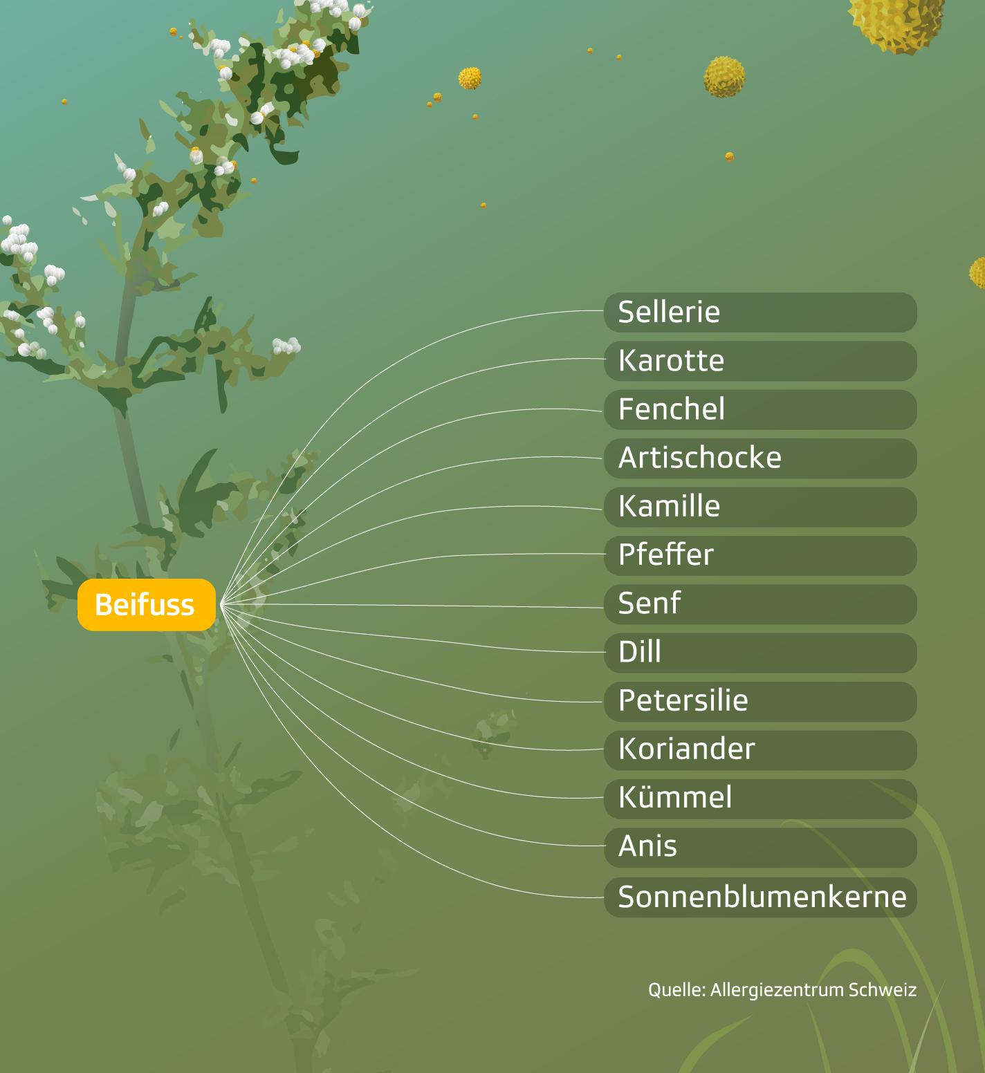 Pollen Kreuzreaktionen