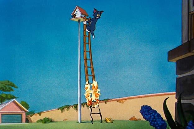 Zur Detailseite von Tom und Jerry