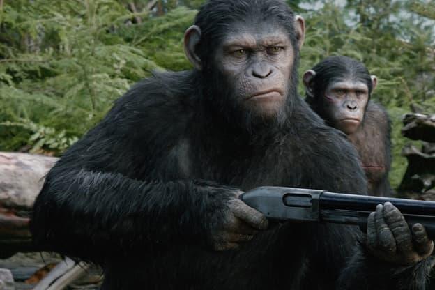 Zur Detailseite von Planet der Affen: Revolution