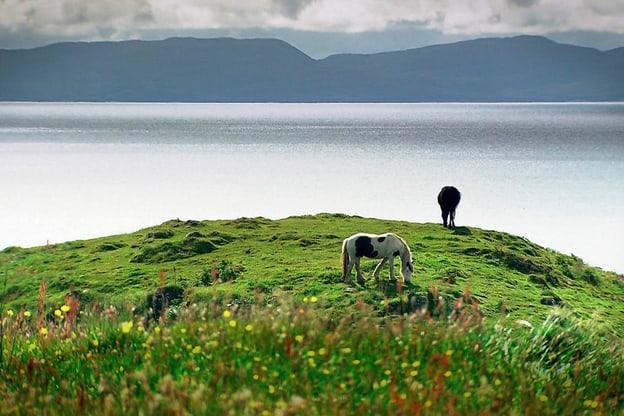Zur Detailseite von Schottland – Rebellen im Rock