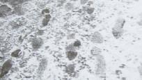 Audio «Sicher zu Fuss durch den Winter» abspielen