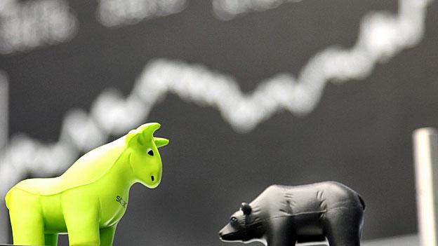 Ein Bullen-Jahr für Schweizer AnlegerInnen