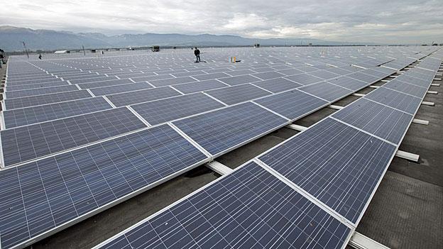 Umweltverbände setzen auf erneuerbare Energien