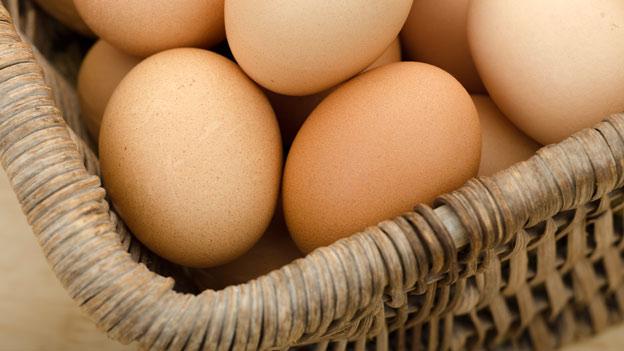 Gefälschte Bio-Eier: Vorerst Entwarnung