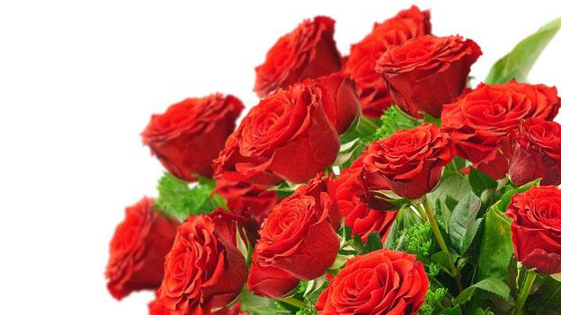 Muttertags-Spezial: Der grosse Rosencheck