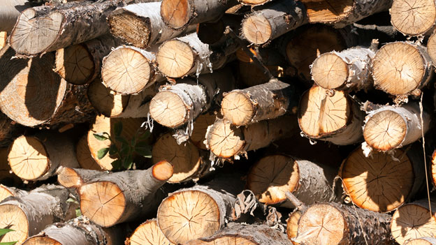 Brennholz: Für zehn Kilo bezahlt, aber nur 8,5 Kilo erhalten