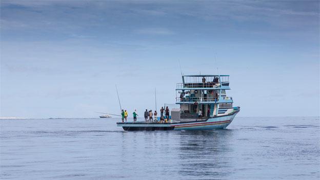 «Espresso Aha!»: Thunfisch: Wirklich mit der Angel gefangen?