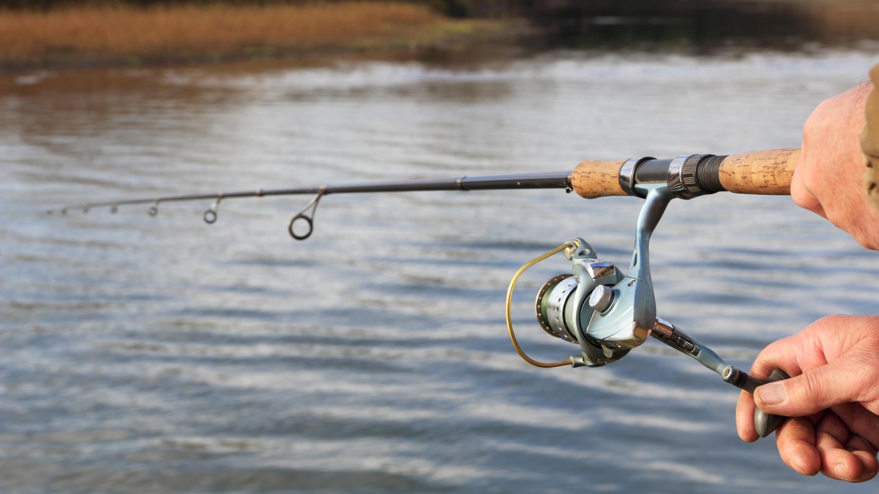 Fischen: Der Weg zum Wasser führt durch Kurse