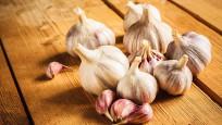 Audio «Knoblauch – Unentbehrliche Würzpflanze» abspielen