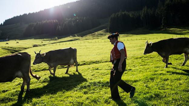 Audio «Beim Label «regional» denken auch Städter an Kühe» abspielen