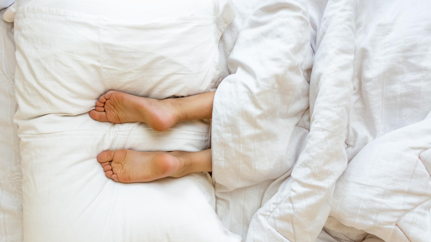 Unklare Herkunft auch bei Bettwaren-Daunen