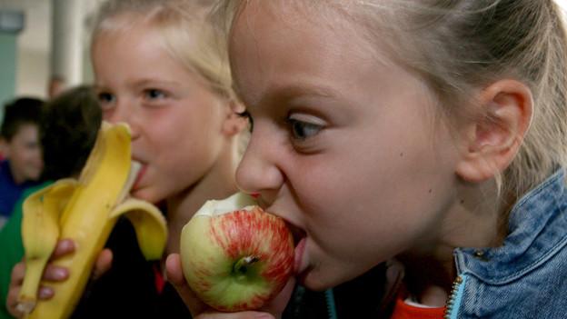 Audio ««Espresso»-Aha: Zähneputzen mit einem Apfel» abspielen