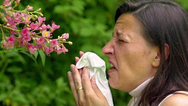 Schweiz testet neues System zur Pollenmessung