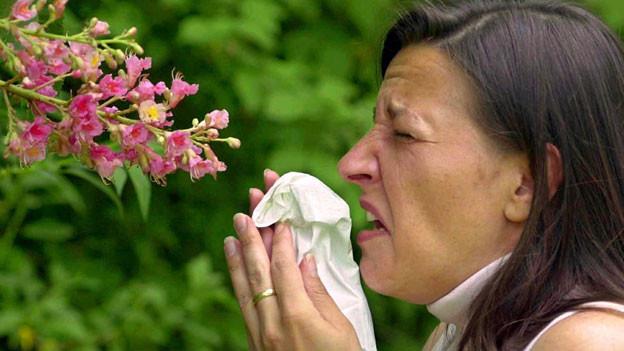 Audio «Schweiz testet neues System zur Pollenmessung» abspielen
