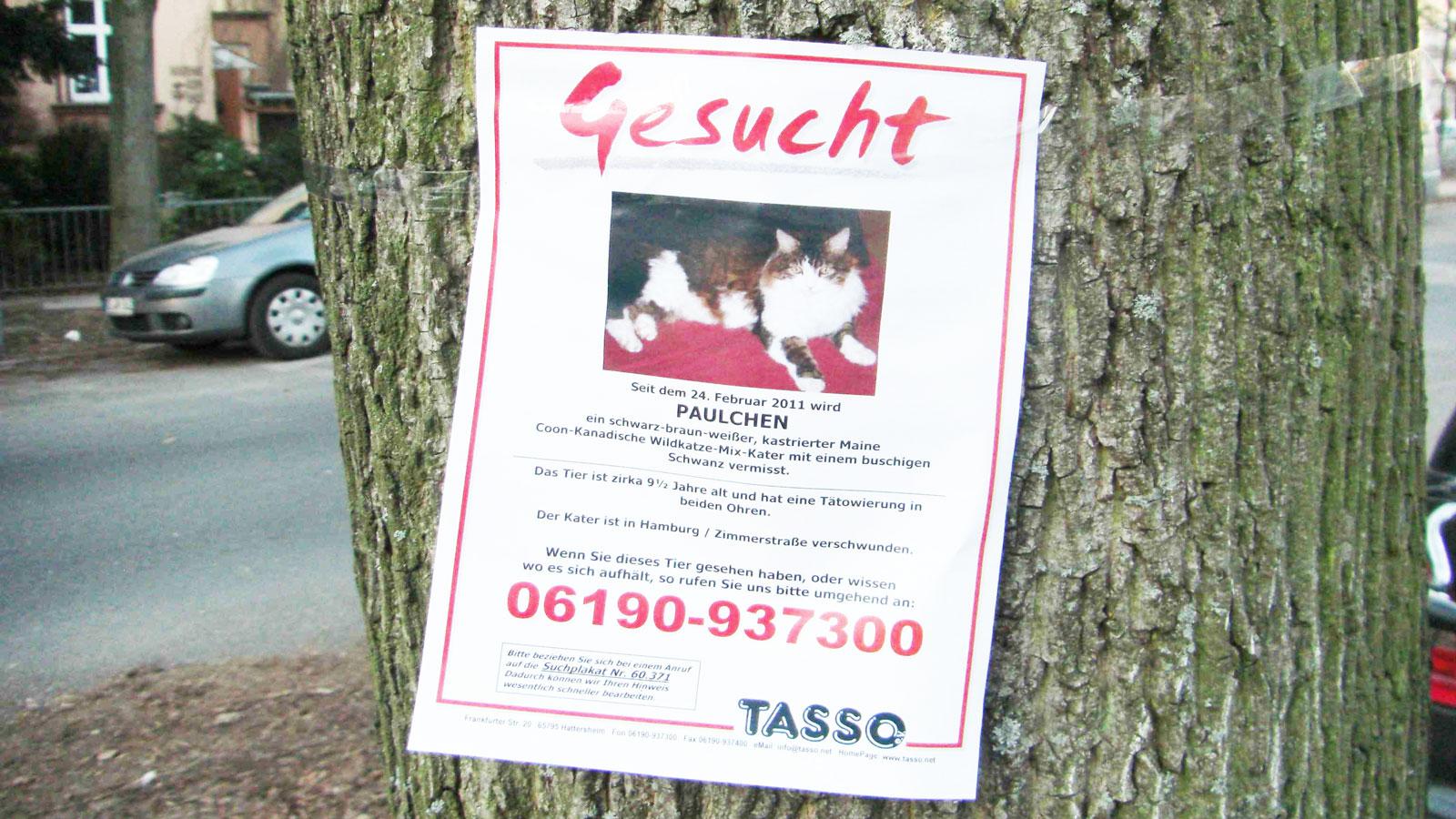Betrug mit vermissten Tieren