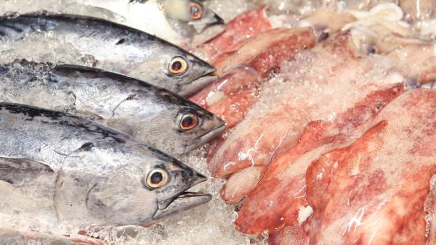Audio «Fischherkunft wird besser deklariert» abspielen