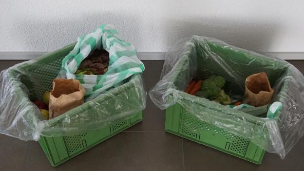 Gemüse-Abo im Praxistest: Mehr Abwechslung auf dem Teller