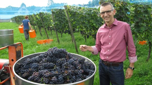 Ein Forschungszentrum für den Deutschschweizer Wein