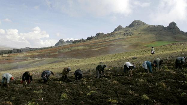 Klimawandel in Peru - Der Naturkalender ist durcheinandergeraten